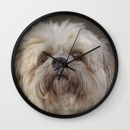 The Shih Tzu Wall Clock