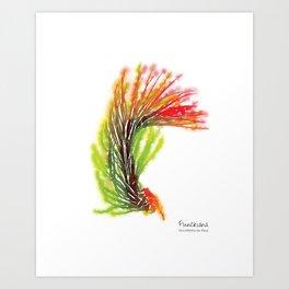 Tillandsia Funckiana Air Plant Watercolors Art Print
