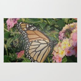 Monarch Butterfly Abstract Rug