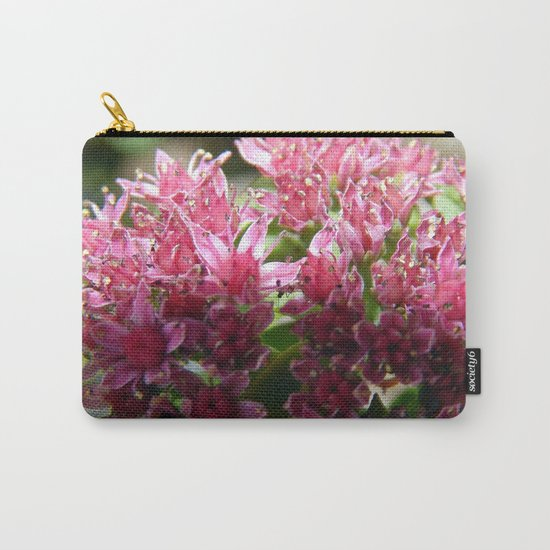 Sedum Flowers and the Ant Carry-All Pouch