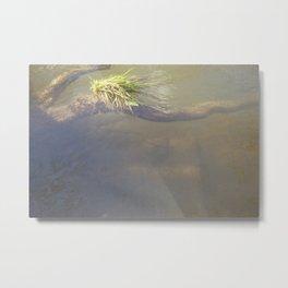 River #6 Metal Print