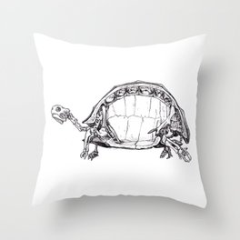 Anatomy of a Turtle Throw Pillow