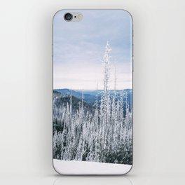 Atop Grab Hammer Trail, Snowshoe, WV, 2014 iPhone Skin