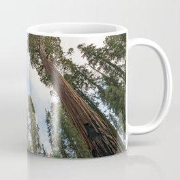 Redwood Sky - Giant Sequoia Trees Coffee Mug
