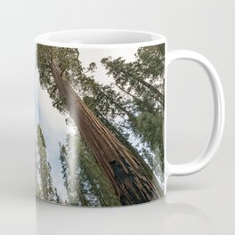 Redwood Sky - Giant Sequoia Trees Coffee Mug