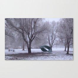 Frozen Park Canvas Print