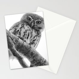 Pearl-Spotted Owlet Stationery Cards