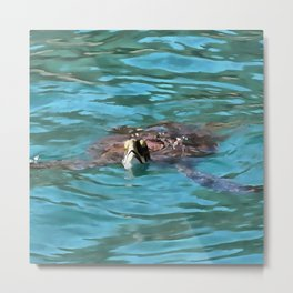 Loggerhead Sea Turtle Metal Print