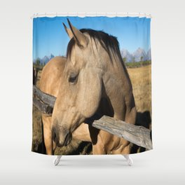 Shy - Horse Plays Coy in Western Wyoming Shower Curtain