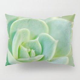 Sempervivum close-up shot Pillow Sham