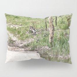 Rustic water crossing Pillow Sham