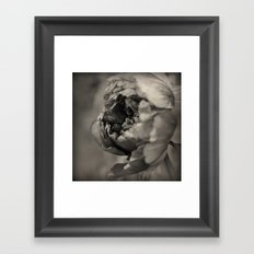 Quiet Dance Framed Art Print