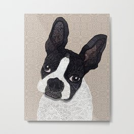 Boston Terrier 2015 Metal Print
