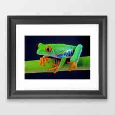 TREE FROG ON BAMBOO Framed Art Print