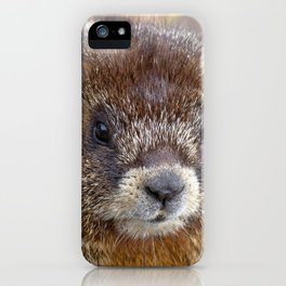 Watercolor Marmot 10, Forest Canyon Tundra, RMNP, Colorado, I Know I'm Cute iPhone Case