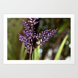 Botanical Dream of Spring Art Print