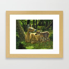 Whitetail Deer and Cute Spring Fawn Framed Art Print