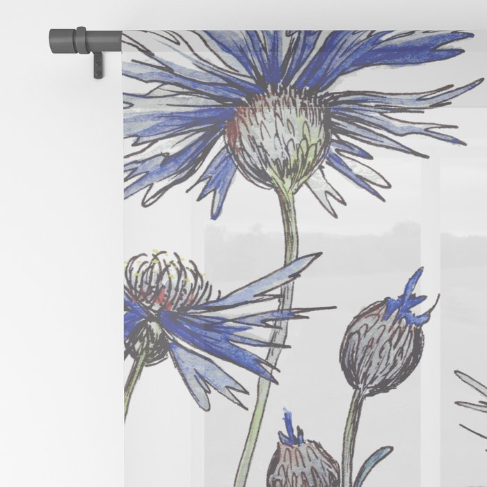Blue Cornflowers, Illustration Sheer Curtain
