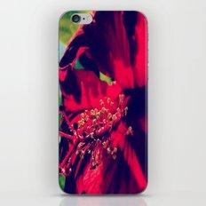 Saimaa iPhone & iPod Skin
