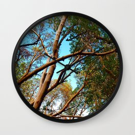 Madrone Wall Clock