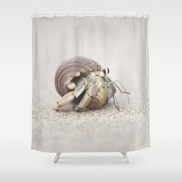 Life & times of a Hermit Crab Shower Curtain