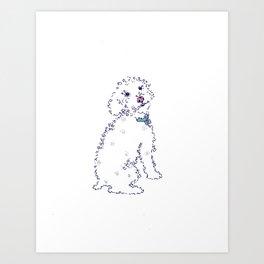 Curly Sam Dog Art Print