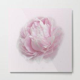 Pink Peony Bloom Metal Print
