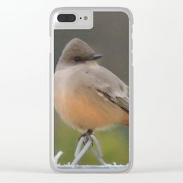 Say's Phoebe at Dusk Clear iPhone Case