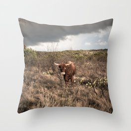 Stare Down - A Texas Bull in the Mesquite and Cactus Throw Pillow