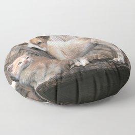 Papua New Guinea Village Puppy and Scruffy Kitten Floor Pillow