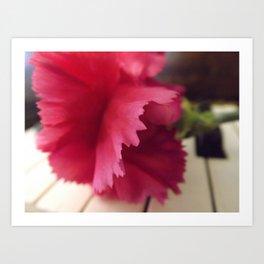 A Soft Pink Melody  Art Print
