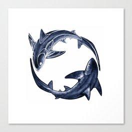 Shark Circle Canvas Print