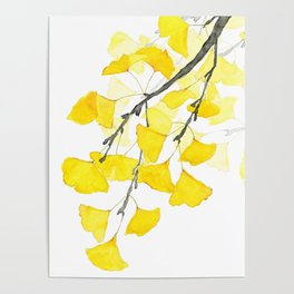 Golden Ginkgo Leaves Poster