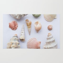 Shell collection Rug