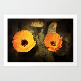 A close-up of a flower of Adonis on a grunged canvas background Art Print