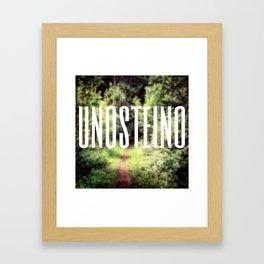 UNOSTEINO Framed Art Print