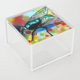 Fly 1 Acrylic Box