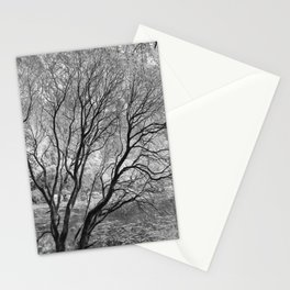 Illusion of Winter Stationery Cards