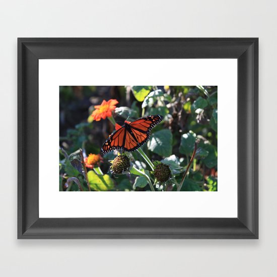 Special Request 2 Framed Art Print
