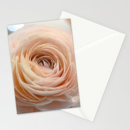 Little Philly (0648) Stationery Cards