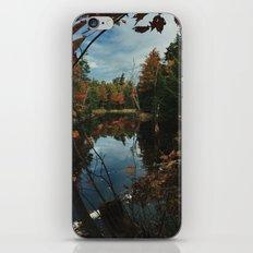 New York Fall iPhone & iPod Skin