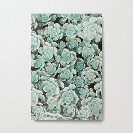 Succulent Pattern | Botanical Fine Art | Travel Photography | Metal Print