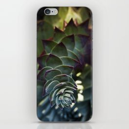 Siempreviva iPhone Skin