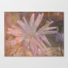 Misty Mauve Canvas Print