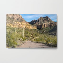 Organ Pipe Cactus growing in Arizona Metal Print