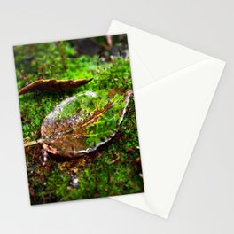 # 330 Stationery Cards