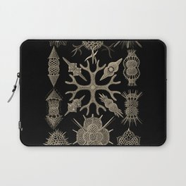 """Spumellaria"" from ""Art Forms of Nature"" by Ernst Haeckel Laptop Sleeve"