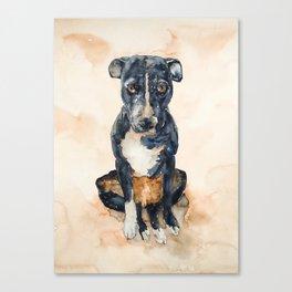DOG #13 Canvas Print