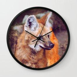 Amber Gaze Wall Clock