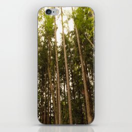 The Tall Trees iPhone Skin